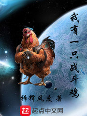 我有一只战斗鸡